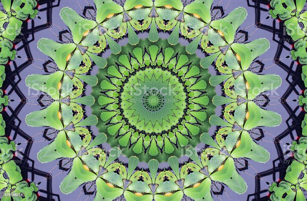 Kaleidoscope abstract ornament stock photo
