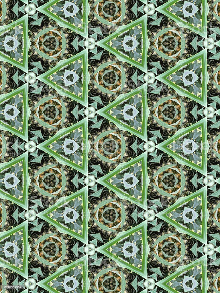 Kaleidoscope Pineapple stock photo