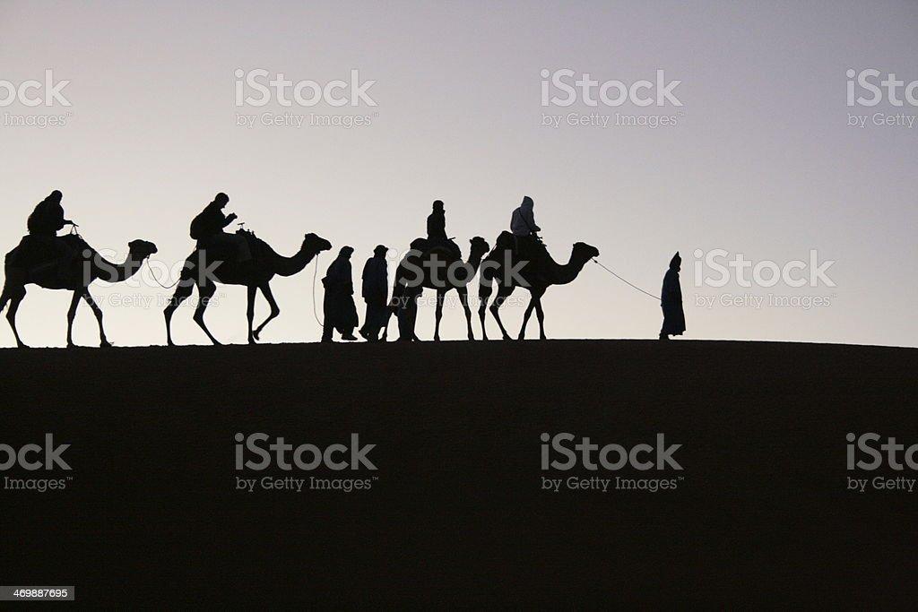 Kamelkarawane im Morgengrauen - Marokko stock photo