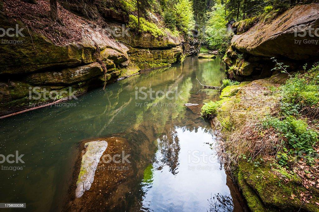 kamenice river stock photo