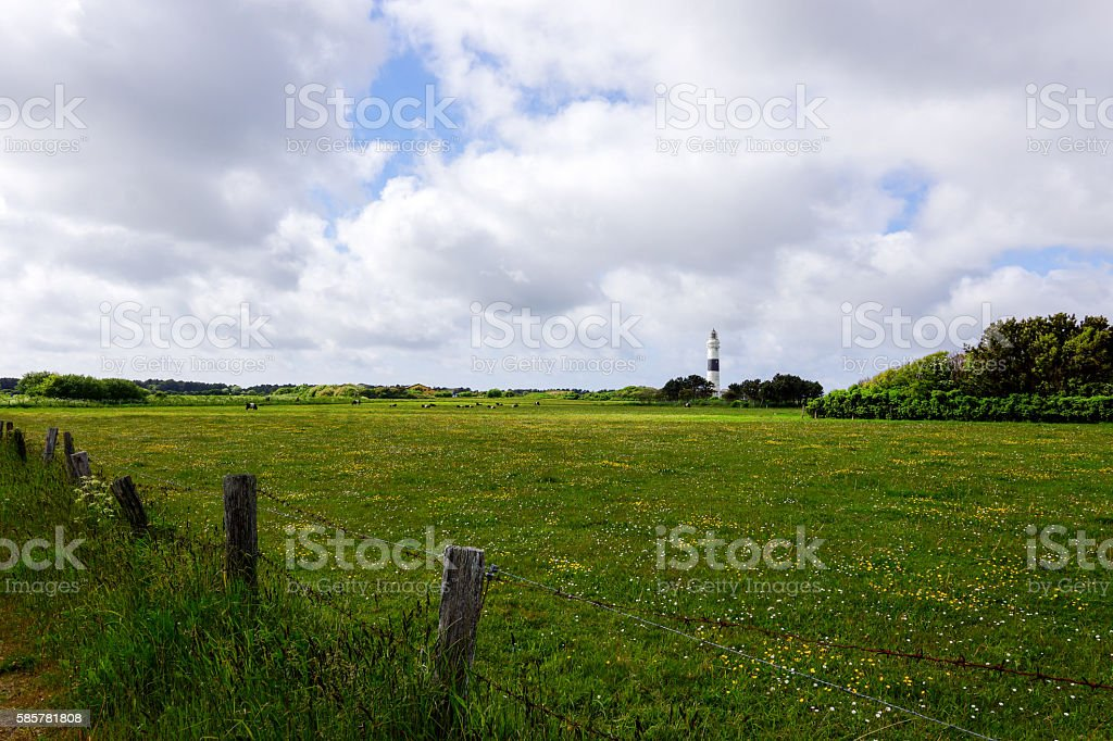 Kampen Lighthouse with summerly Flower Meadow stock photo