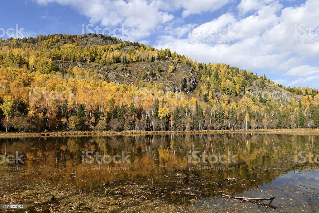 Kanas Lake royalty-free stock photo