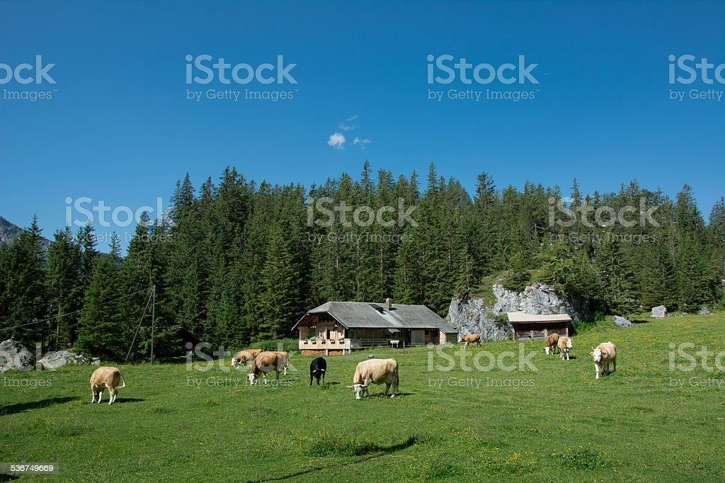Kandersteg, Switzerland stock photo