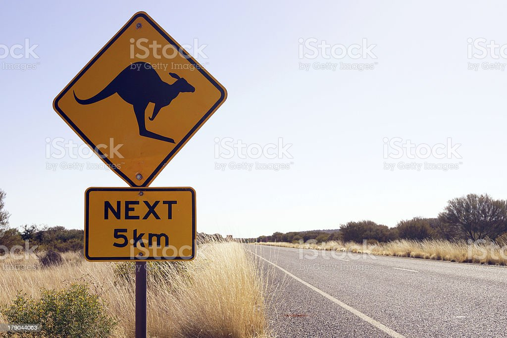 Kangaroo crossing royalty-free stock photo