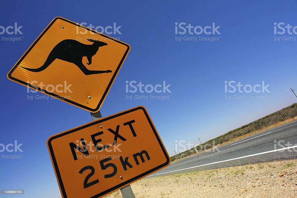Kangaroo crossing sign on country road stock photo