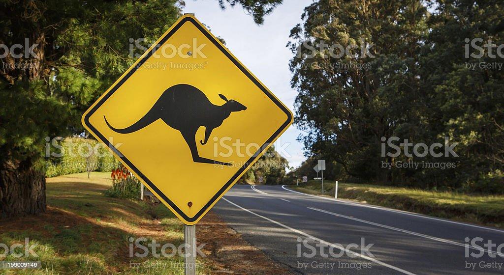 Kangaroo Road Warning Sign stock photo