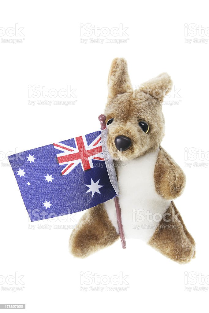 Kangaroo Soft Toy royalty-free stock photo