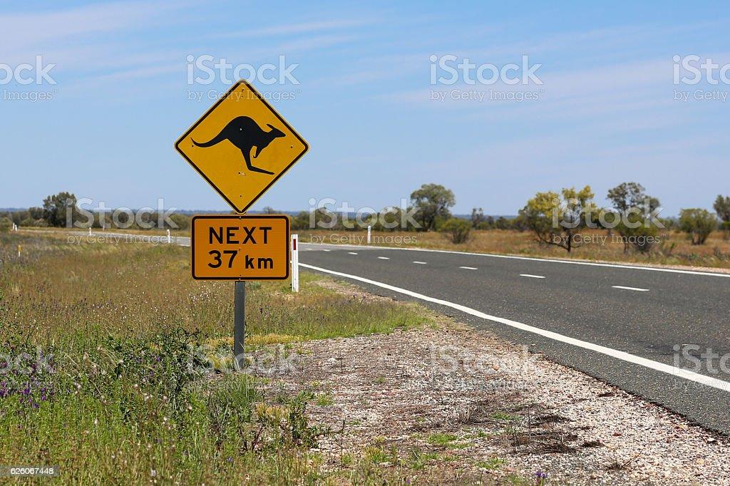 Kangaroo warning sign stock photo