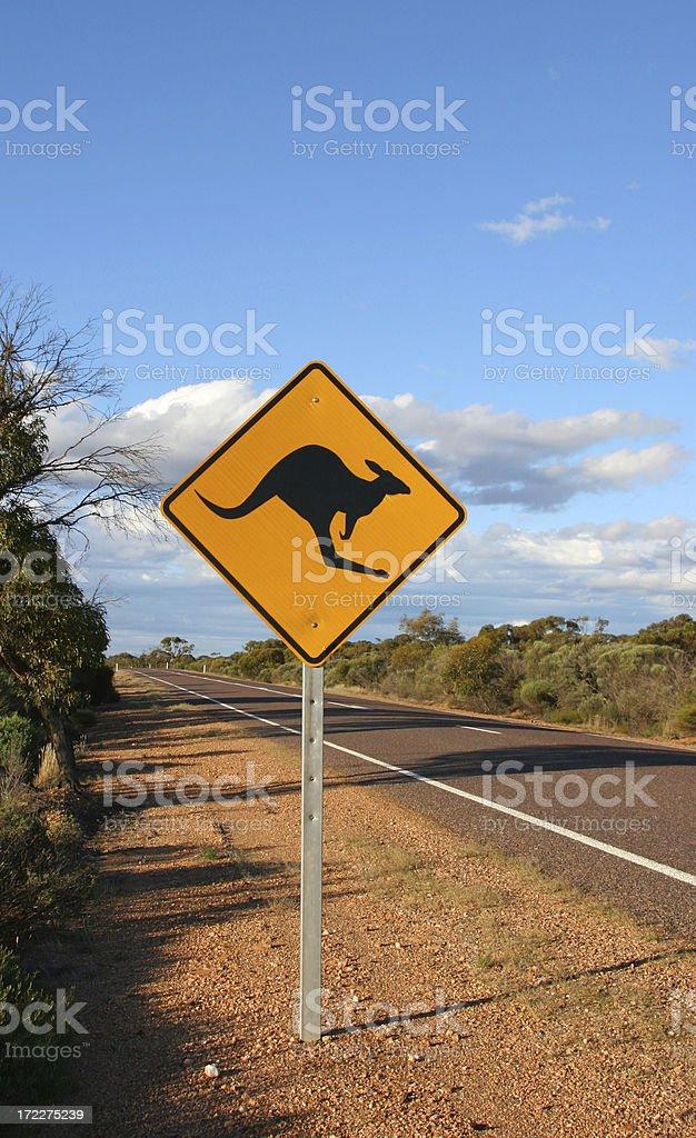 Kangaroos Ahead royalty-free stock photo