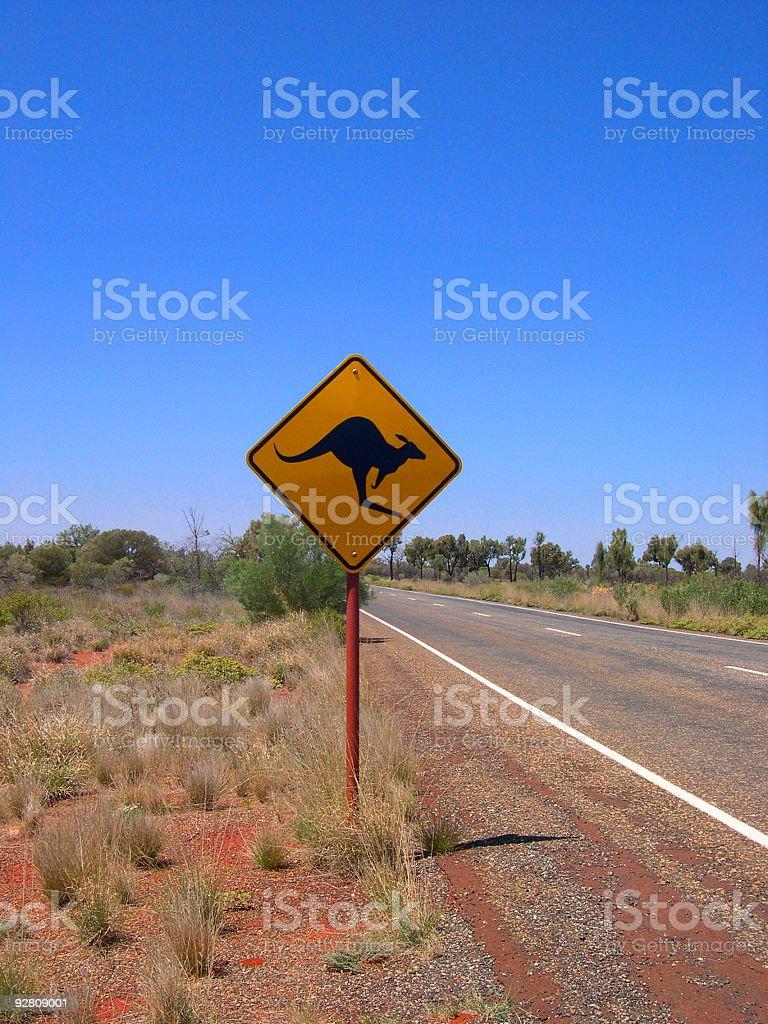 Kangaroos ahead stock photo