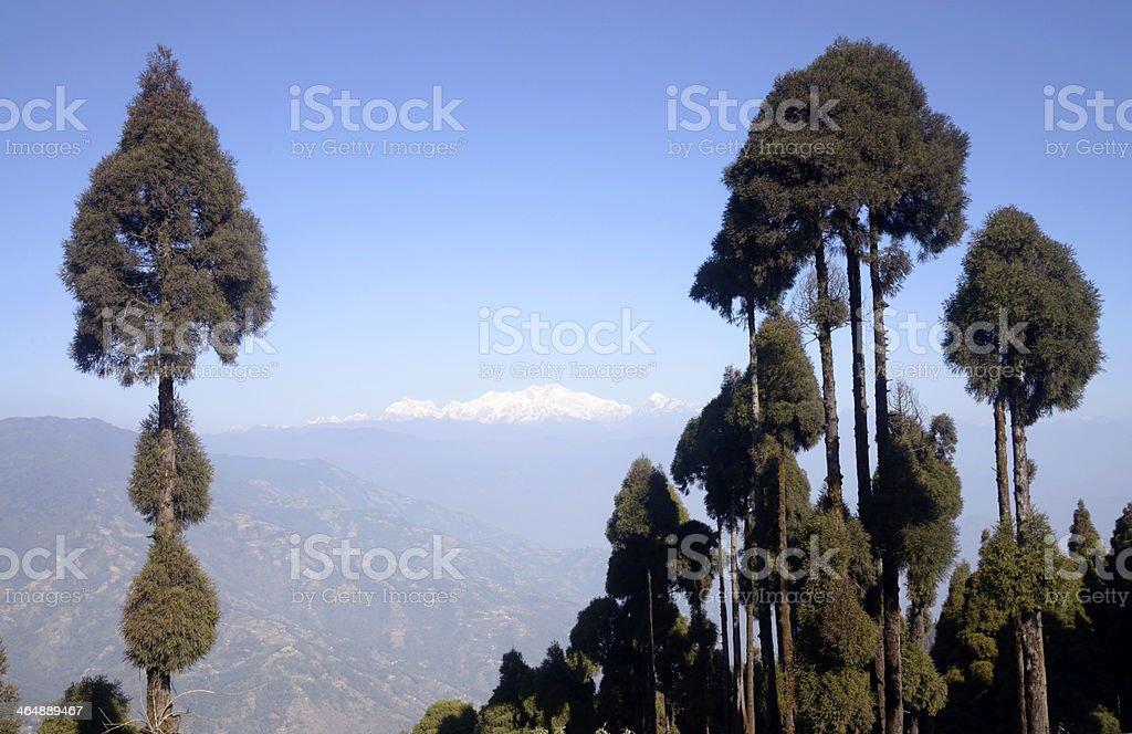Kangchenjunga  from Jorphokhri stock photo