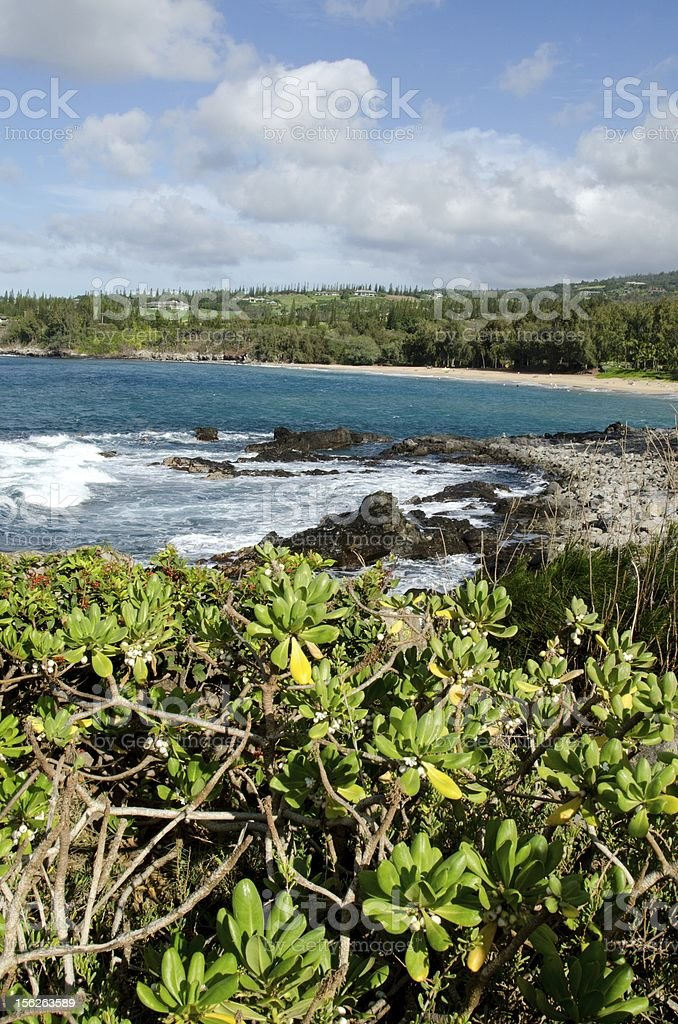 Kapalua coast royalty-free stock photo