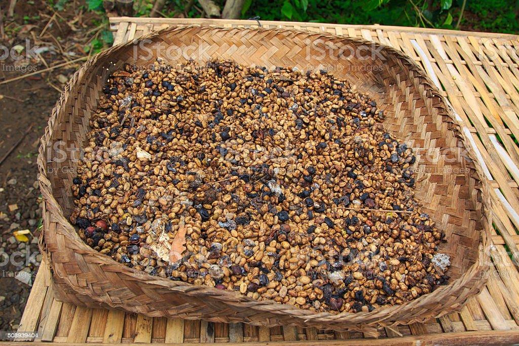 Kape Alamid Coffee stock photo
