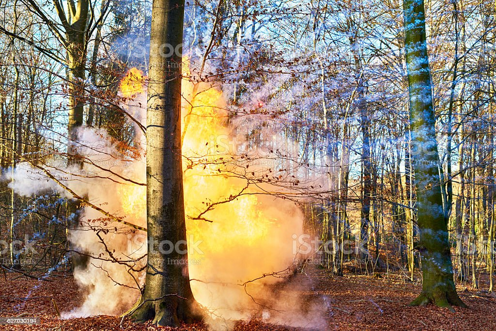 Kapow in the woods stock photo