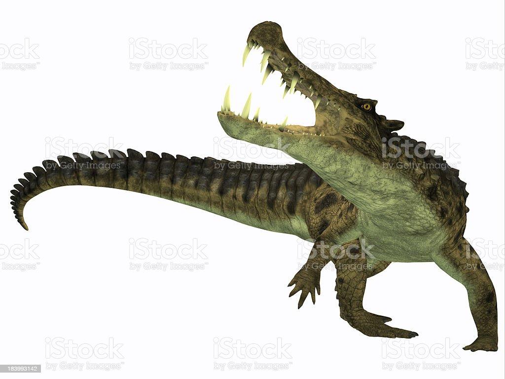 Kaprosuchus on White royalty-free stock photo
