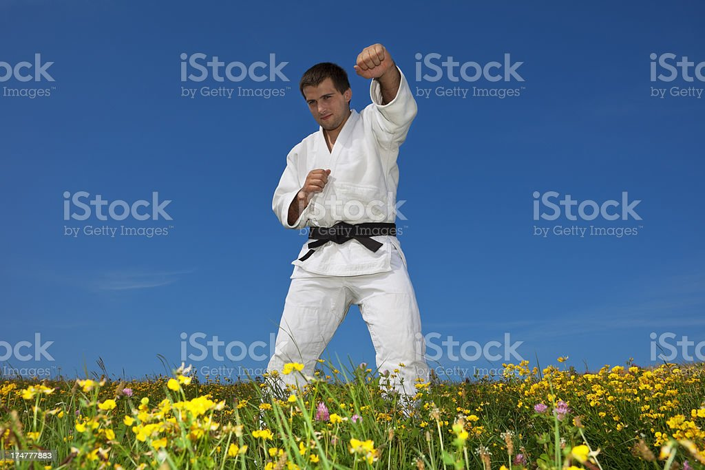 Karate Competitor Practicing Martial Arts on Meadow royalty-free stock photo