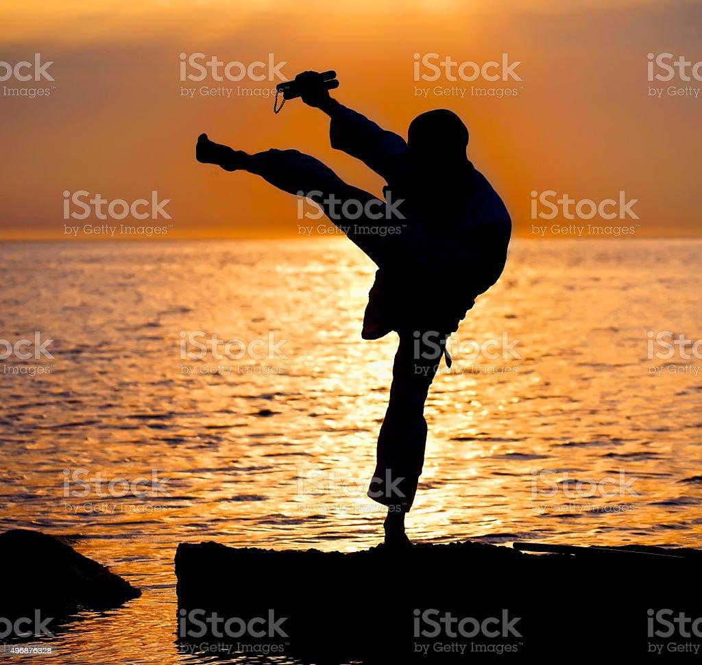 Karate fighter training stock photo