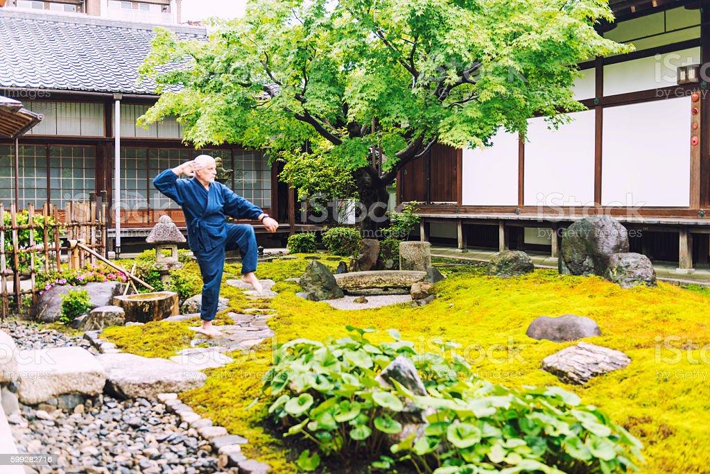 Karate in temple garden stock photo