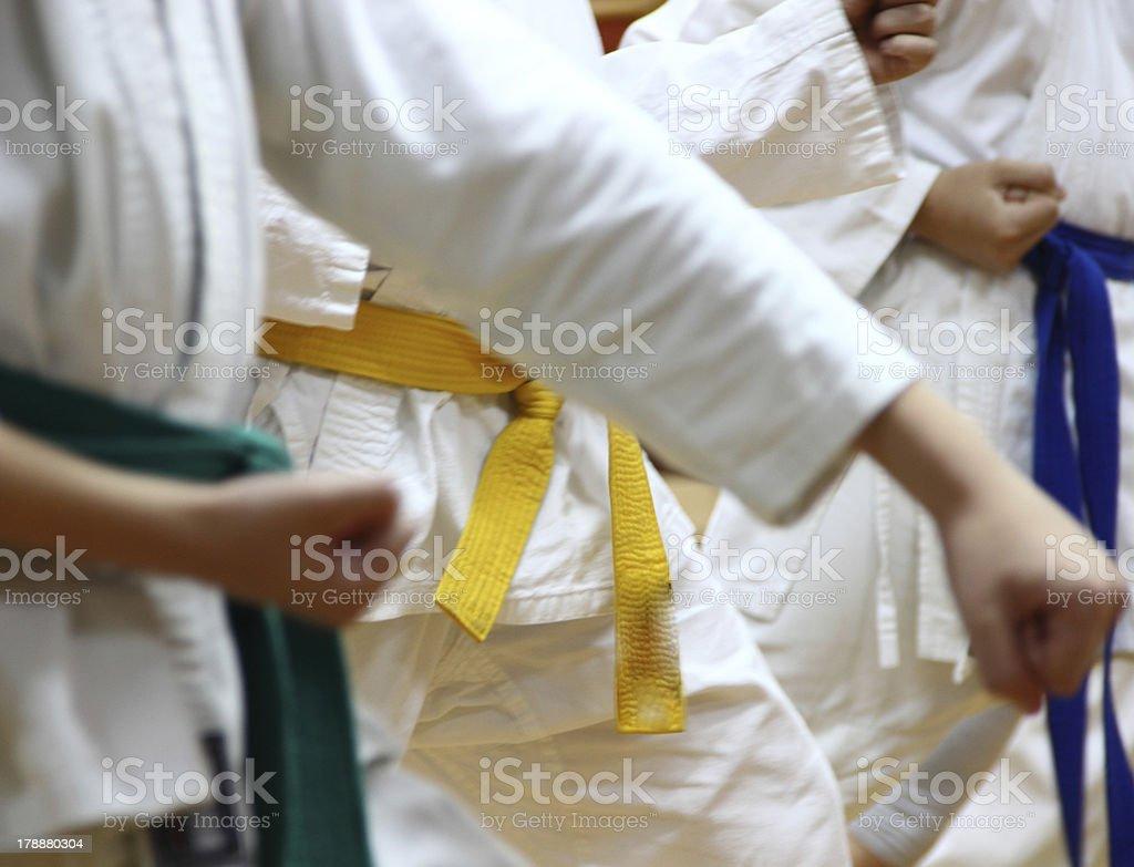 Karate kids. royalty-free stock photo