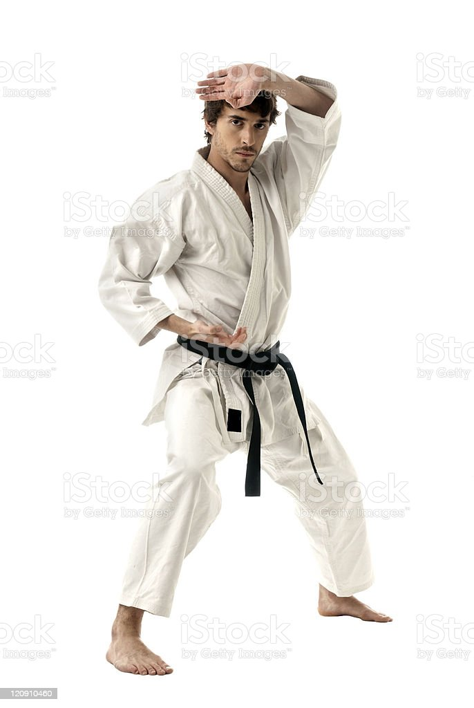 Karate male fighter young isolated on white background royalty-free stock photo