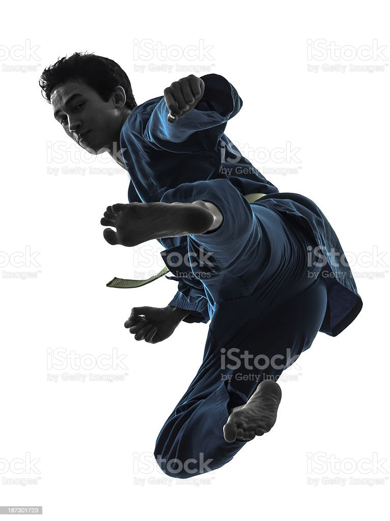 Karate man showing off martial arts in silhouette stock photo