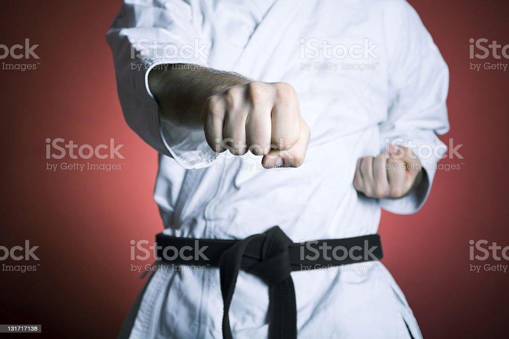Karate Martial Arts royalty-free stock photo