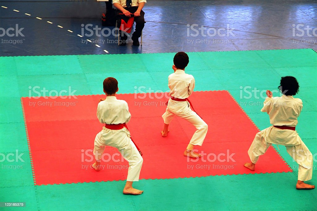 Karate royalty-free stock photo