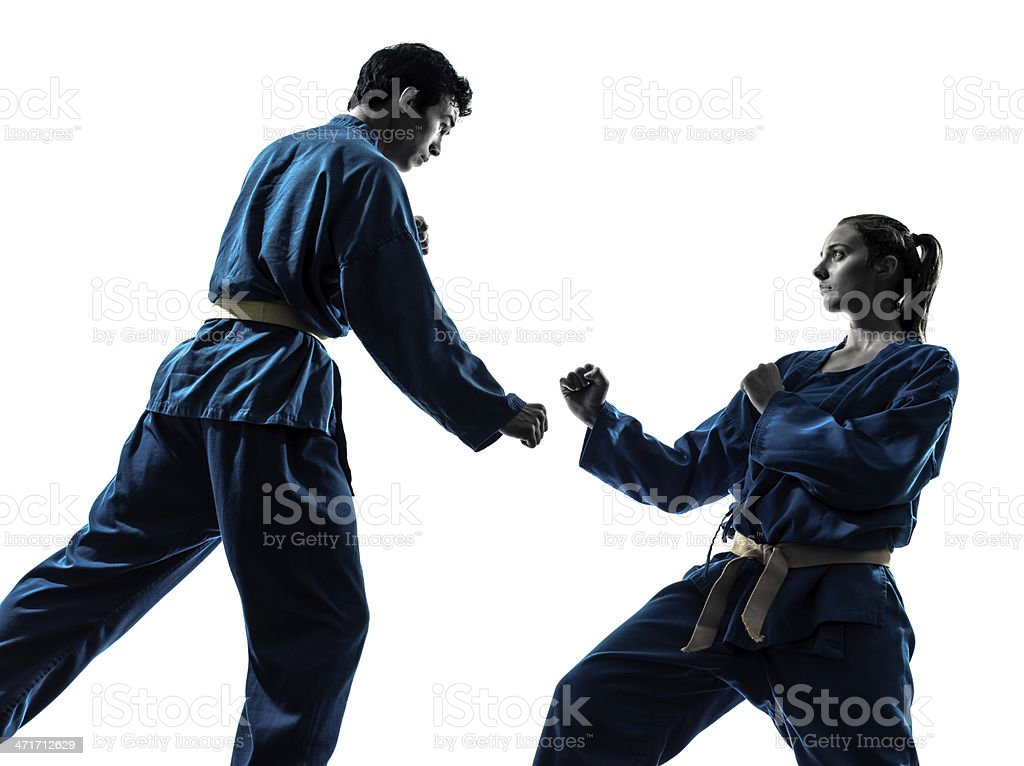 karate vietvodao martial arts man woman couple silhouette royalty-free stock photo