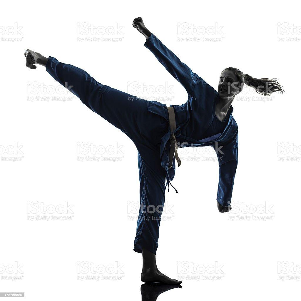 karate vietvodao martial arts woman silhouette stock photo