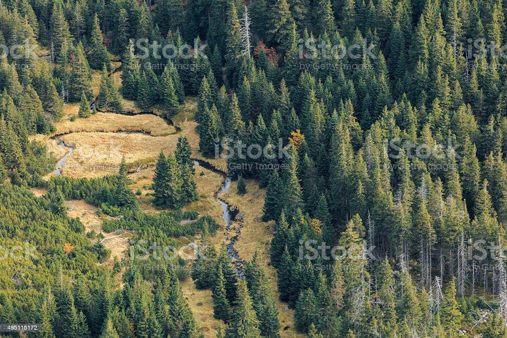Karkonosze national park, Poland stock photo