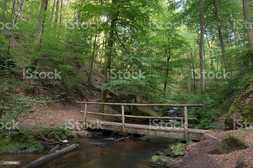 Karlstal,Trippstadt,Deutschland royalty-free stock photo