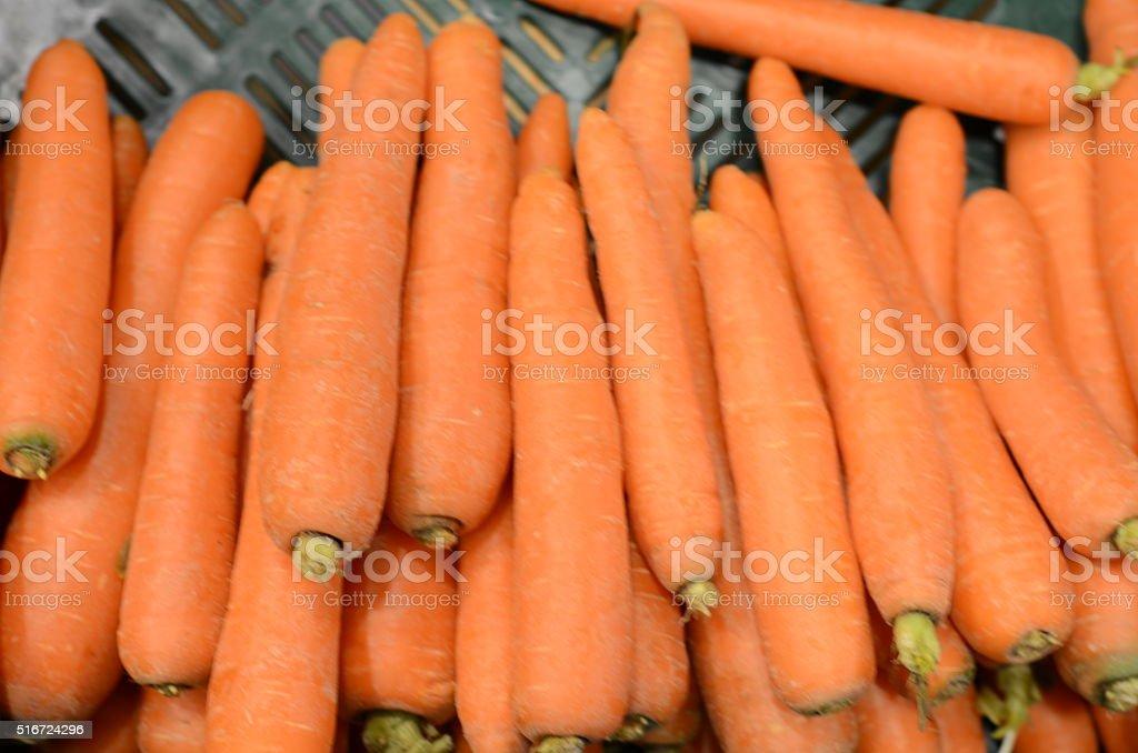Karotten stock photo