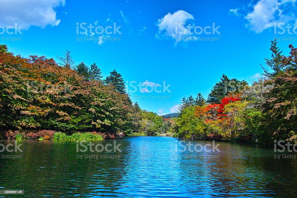 Karuizawa Kumoba pond  of autumnal leaves season stock photo