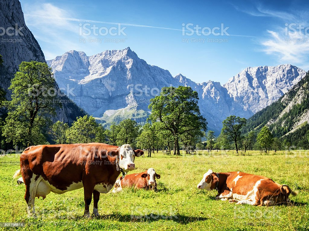 karwendel mountains stock photo