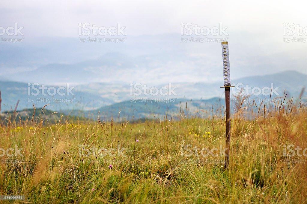 katana stock photo