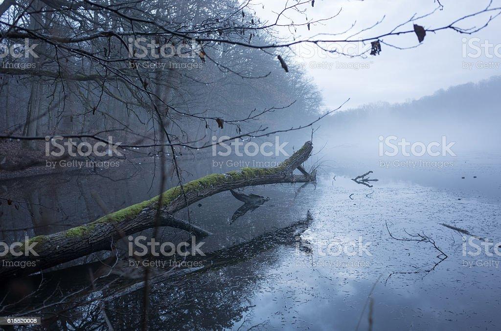 Katzenbach Lake stock photo
