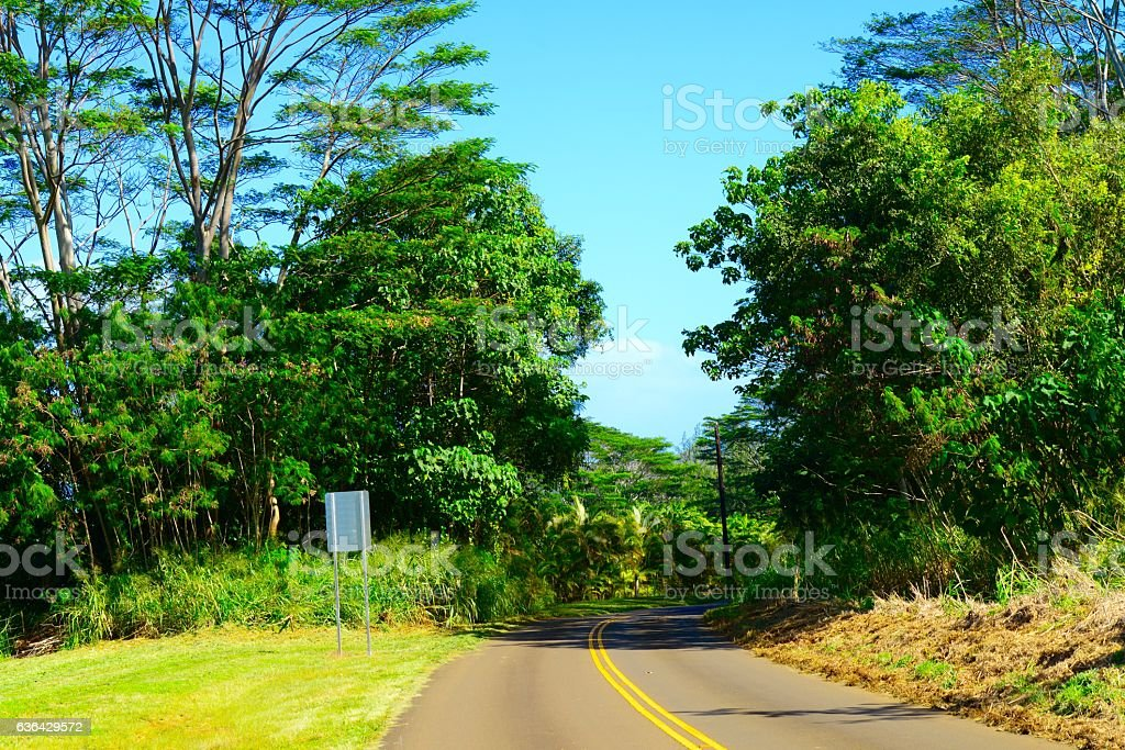 Kauai Countryside stock photo