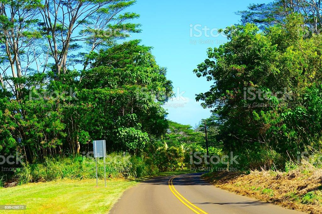 Kauai Countryside stock photo