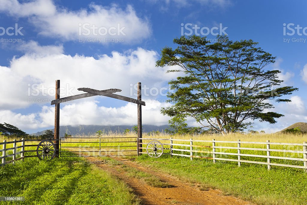 Kauai Farm Landscape stock photo