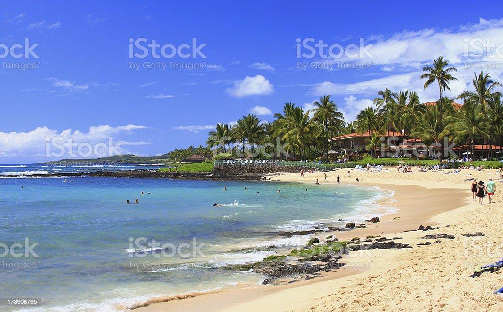 Kauai Hawaii Palm tree beach and resort hotel stock photo