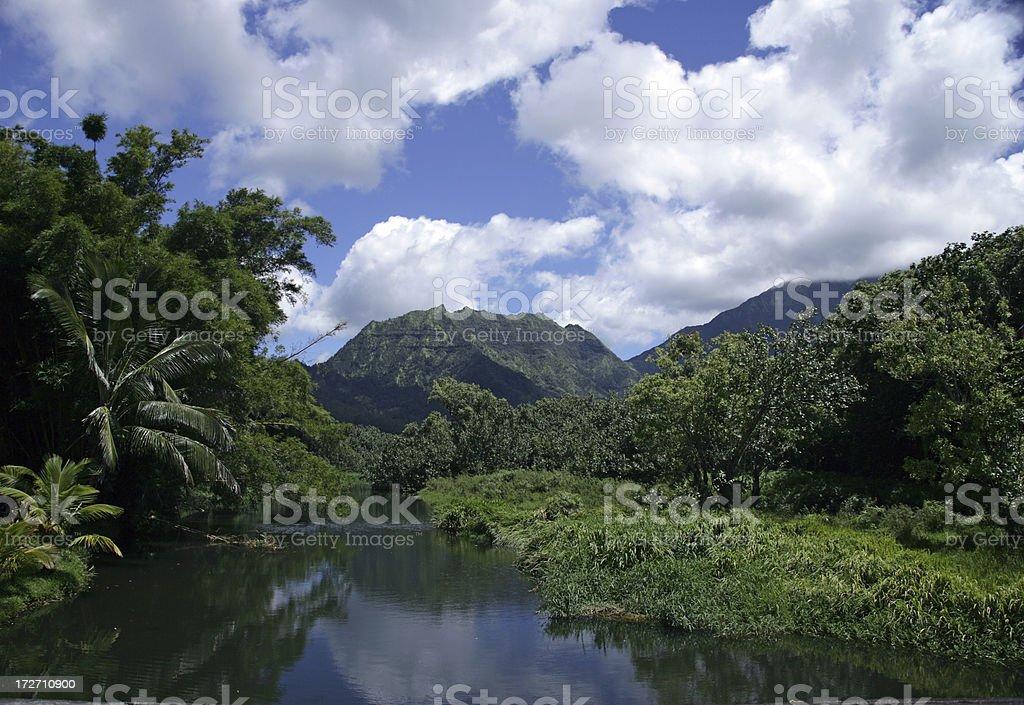 Kauai,Hawaii royalty-free stock photo