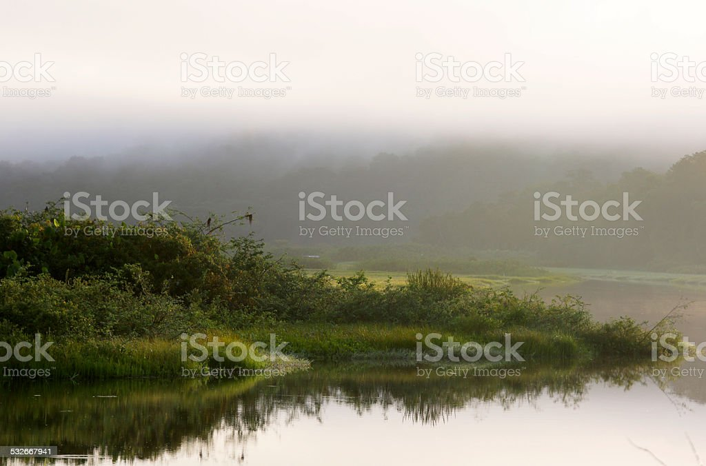 Kaw-Roura National Nature Reserve, French Guina stock photo