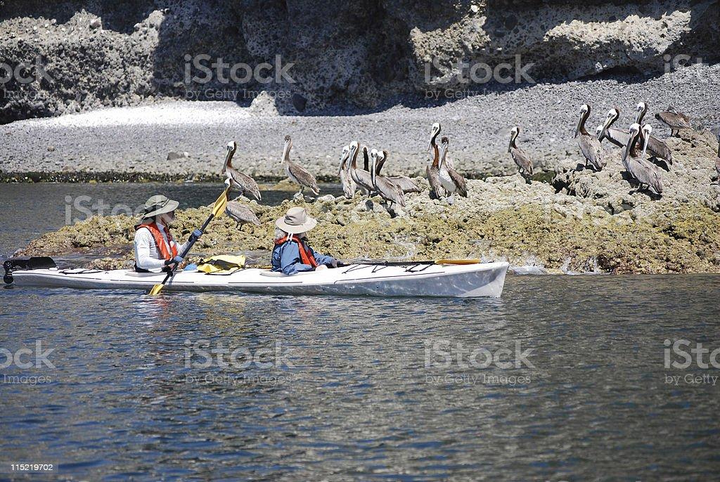 Kayakers stock photo