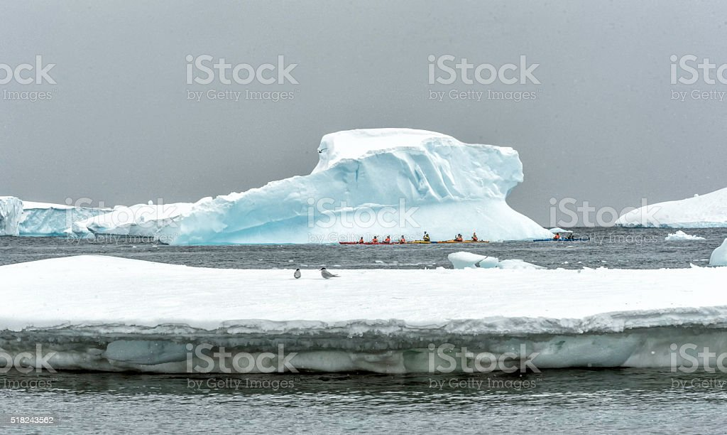 Kayaking among the icebergs in Antarctica stock photo