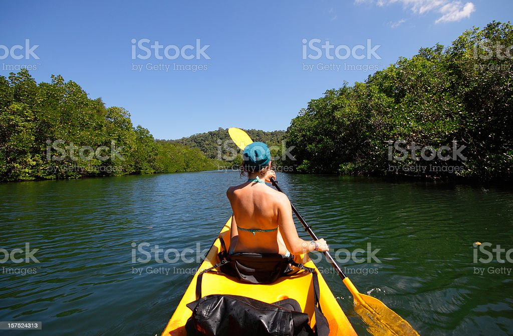 Kayaking in the Jungle stock photo