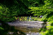 Kayaks pulled up on shore