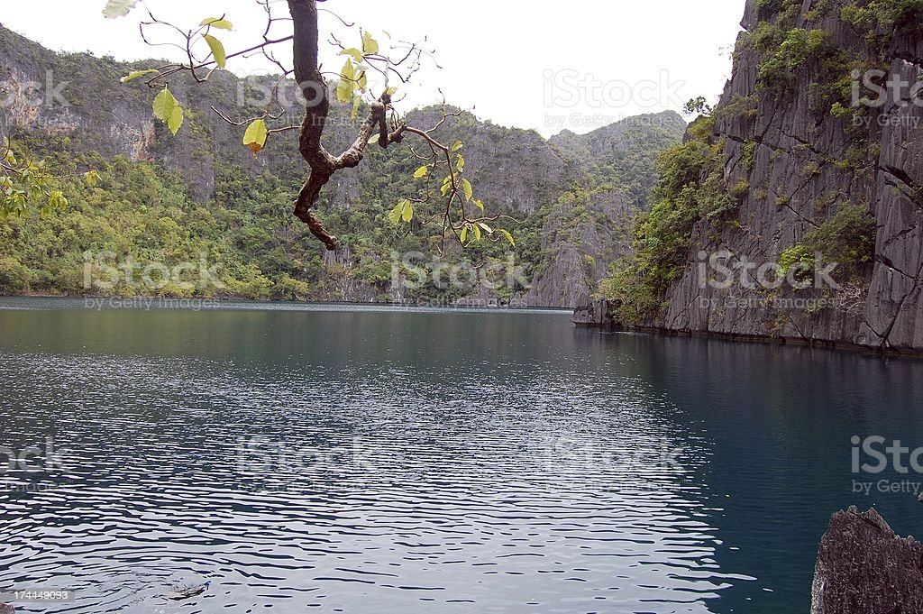 Kayangan lake, Coron island - Palawan, Philippines stock photo