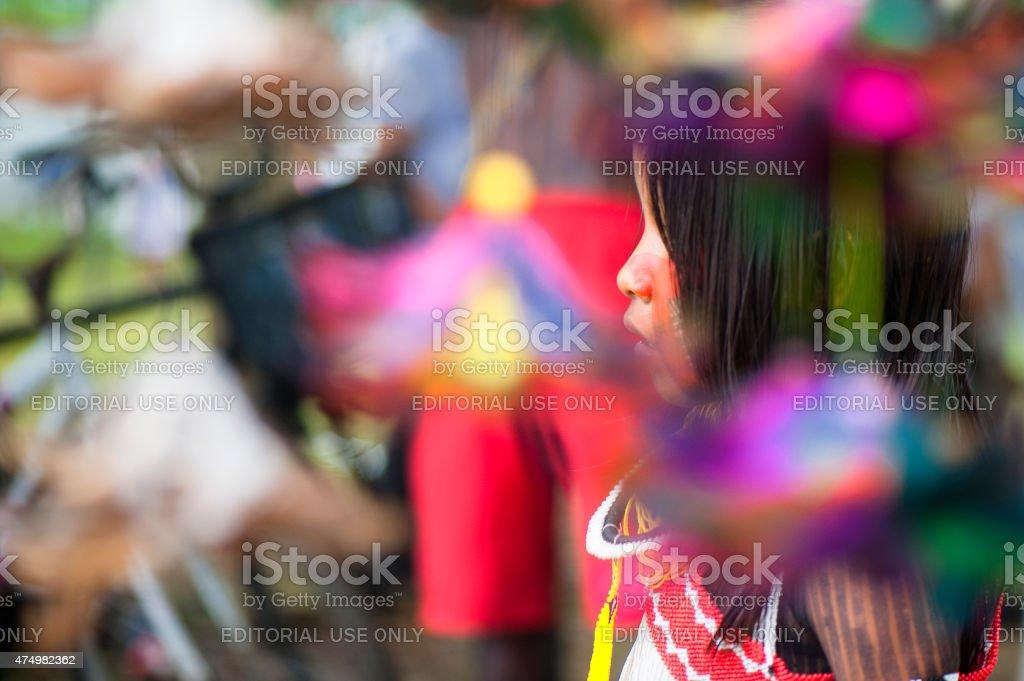 Kayapó Girl stock photo