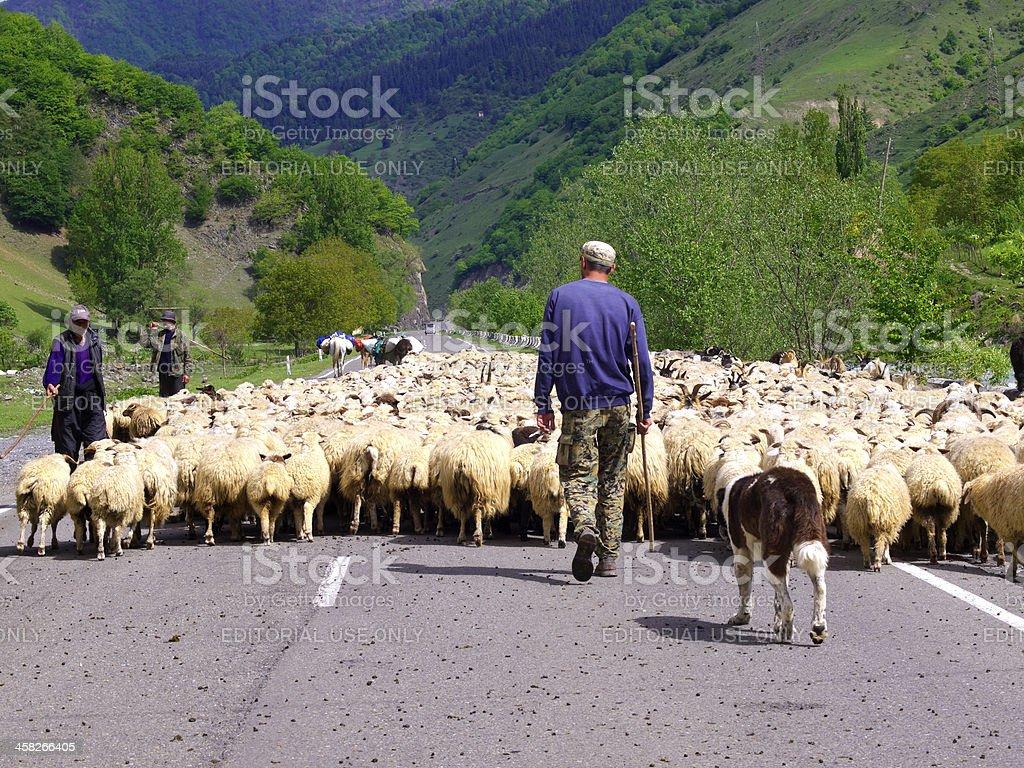 Kazbegi valley royalty-free stock photo