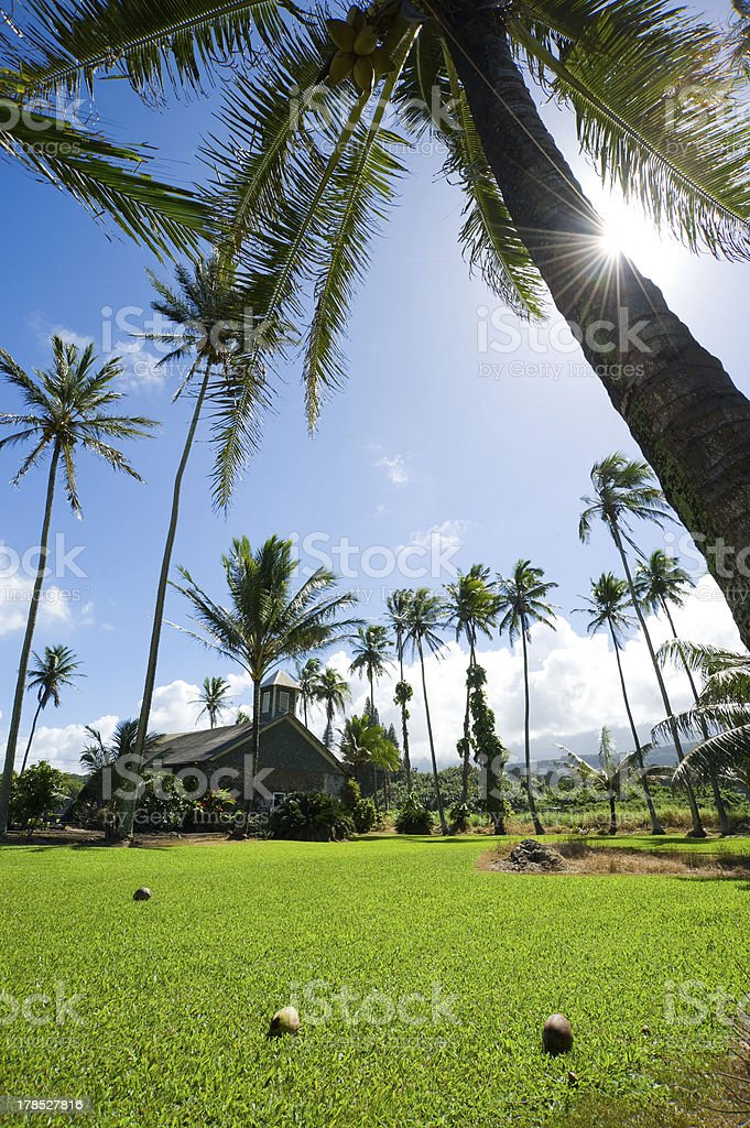 Keanae Peninsula royalty-free stock photo